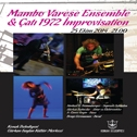 Varese Ensemble & Çatı 1972 improvisation