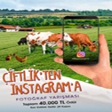 Çiftlik'ten Instagram'a
